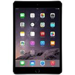 iPad Mini 2-3 LCD/Glas